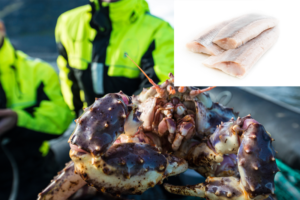 Sluttrapport – Norway Shrimp AS