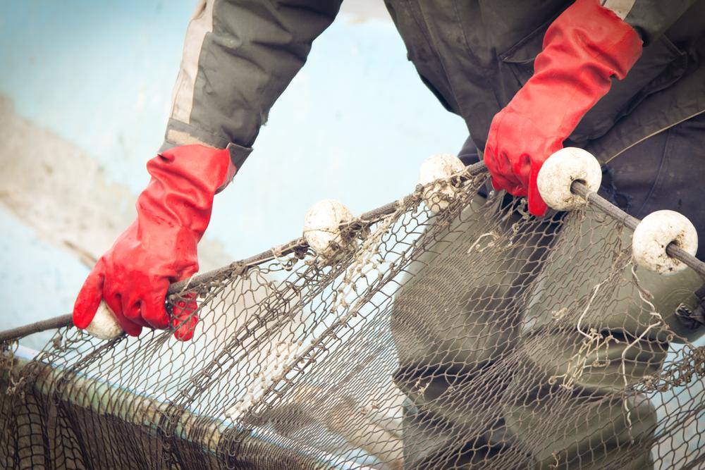 Kompetanseplan for rekruttering av fiskere
