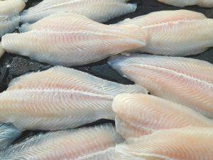 Bærekraftig trading av hvitfisk fra Finnmark