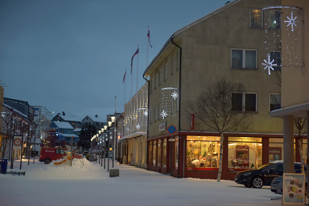 Etablering og utvikling av Handels- og Serviceforening Sør-Varanger