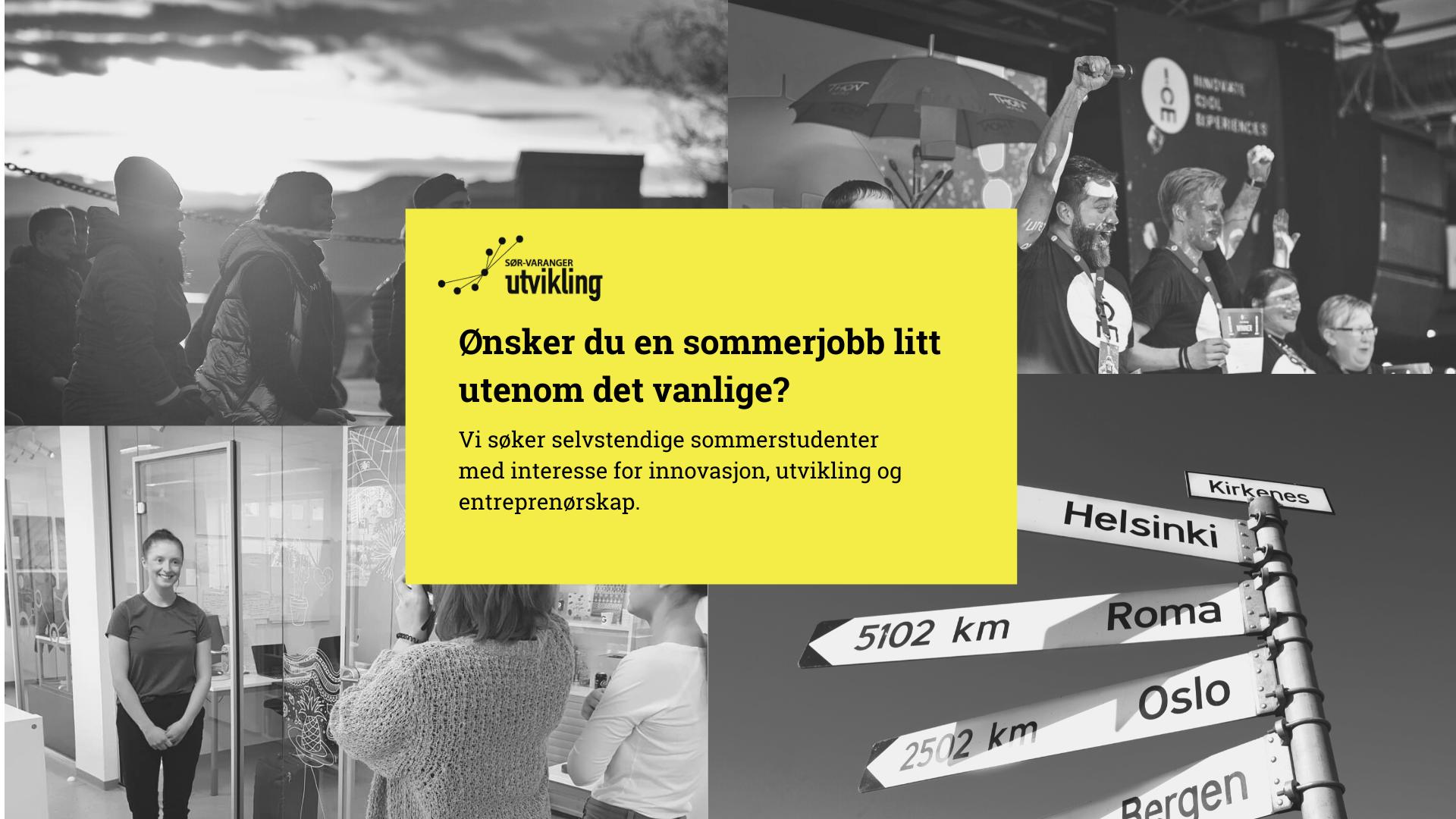 Sommerjobb i Sør-Varanger Utvikling?